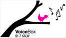 voicebox_logo_final_01-758266
